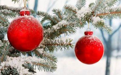Pozánka na vánoční akce školy